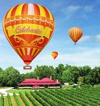 圖片:Ballooning_&_o'reillys_vineyard_new_balloon_nov_09_lr.jpg