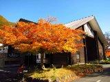 奥入瀨~燒山