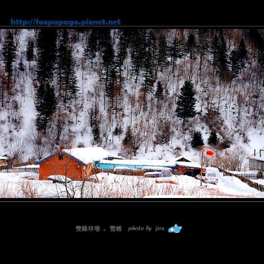 東北之雪鄉