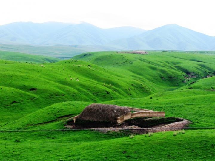 2006年6月新疆天山之旅