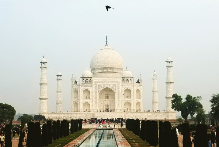 【2019年 北印度之旅_ Finally, TAJ MAHAL.】