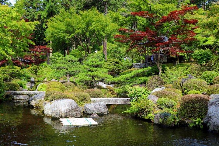 三室戶寺池泉庭園